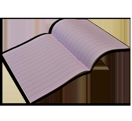 Dyslexia Exercise Books - The exercise book company